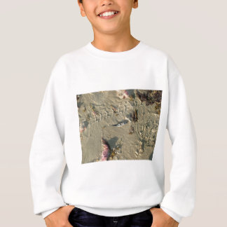 little fish on beach sweatshirt