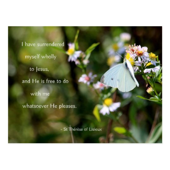 Little Flower feeds little butterfly Postcard