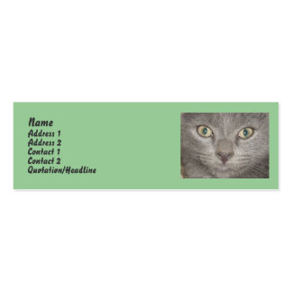 Little Gray Kitten profile cards Pack Of Skinny Business Cards