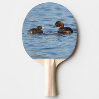 Little Grebe and Chick Ping Pong Paddle