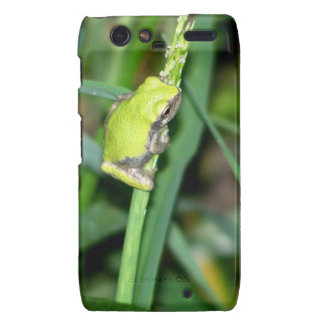 Little Green Frog Droid RAZR Cover