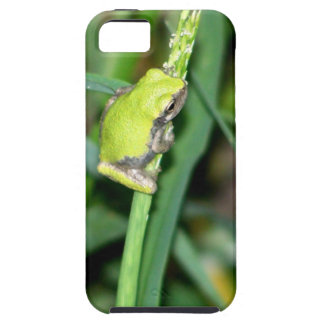 Little Green Frog iPhone 5 Case