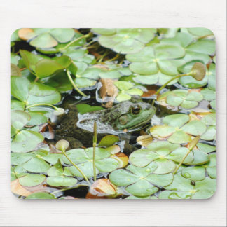 Little Green Frog Mousepad