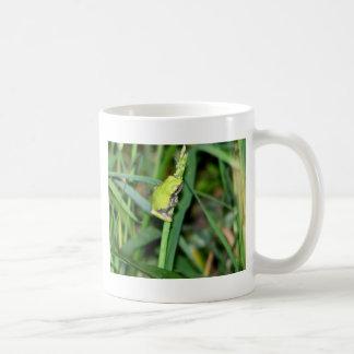 Little Green Frog Coffee Mug