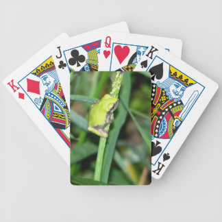Little Green Frog Deck Of Cards