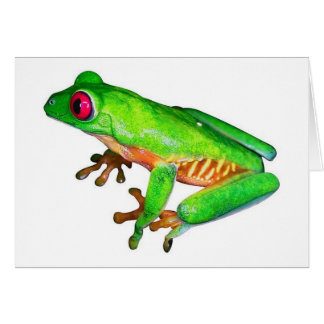 Little green tree frog greeting card