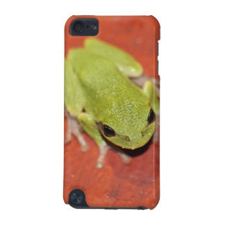 Little Green Tree Frog iPod Touch Case