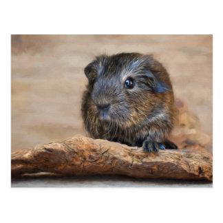 Little Guinea Pig Painting Postcard