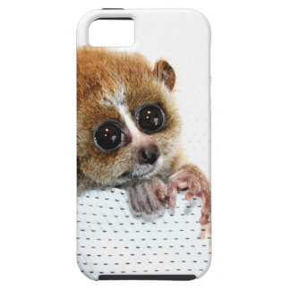 Little Guy iPhone 5 Cover