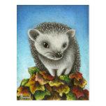 Little hedgehog on a big pile of leaves postcard