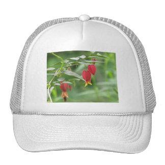 Little Imp Abutilon Trucker Hat