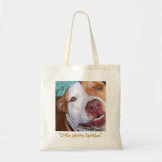 Little Johnny Sparkles Canvas Bags