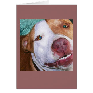 Little Johnny Sparkles Greeting Card