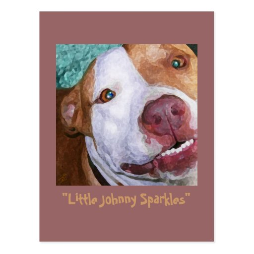 Little Johnny Sparkles Postcards