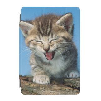 Little Kitten in a Tree iPad Mini Cover