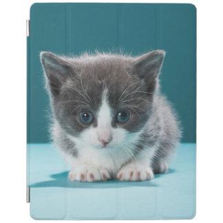 Little Kitten iPad Cover