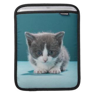 Little Kitten iPad Sleeve