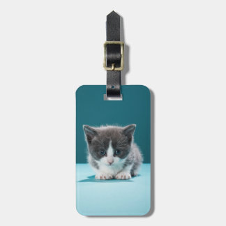 Little Kitten Luggage Tag