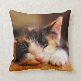 Little Kitty Sleeping Cushion
