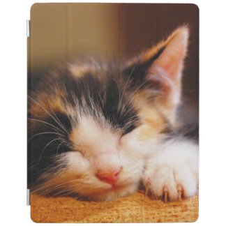 Little Kitty Sleeping iPad Cover