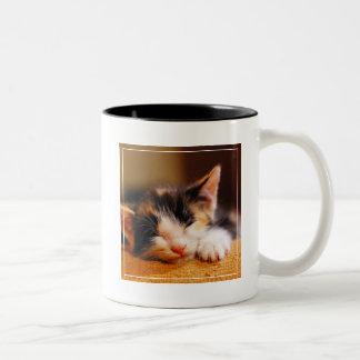 Little Kitty Sleeping Two-Tone Coffee Mug