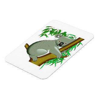 Little Koala Bear in a Gum Tree Vinyl Magnets
