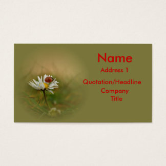 Little ladybug business card