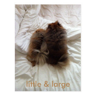 Little & Large Postcard