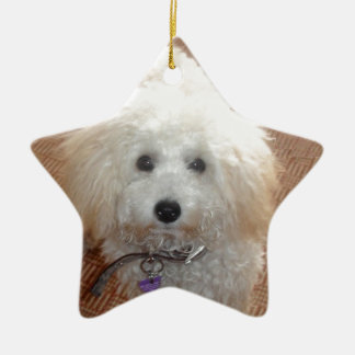 Little Miss Pretty Poodle Ceramic Star Decoration