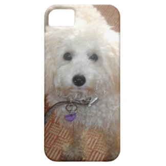 Little Miss Pretty Poodle iPhone 5 Case