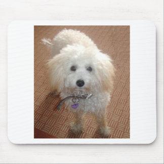 Little Miss Pretty Poodle Mouse Pad