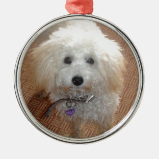 Little Miss Pretty Poodle Silver-Colored Round Decoration