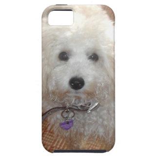 Little Miss Pretty Poodle Tough iPhone 5 Case