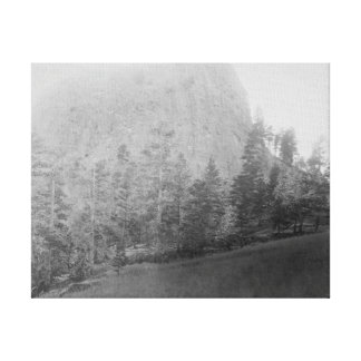 Little Missouri Butte Beyod Field and Trees Canvas Print