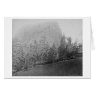 Little Missouri Butte Beyod Field and Trees Card