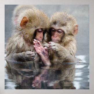 Little Monkeys | Hot Springs, Japan Poster