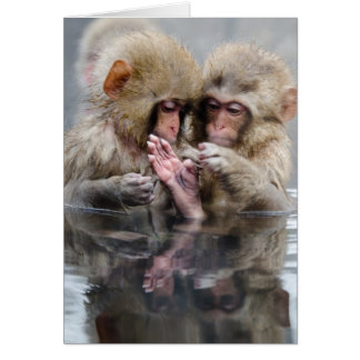 Little monkeys in hot spring, Japan. Card