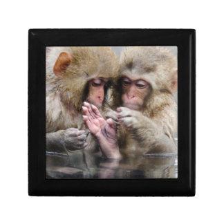 Little monkeys in hot spring, Japan. Gift Box
