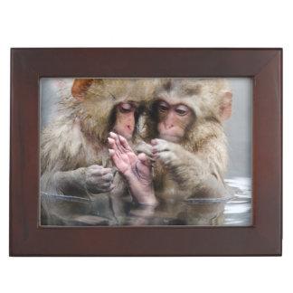Little monkeys in hot spring, Japan. Keepsake Box