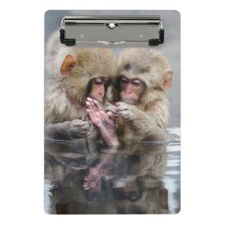 Little monkeys in hot spring, Japan. Mini Clipboard