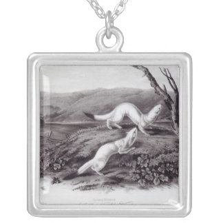 Little Nimble Weasel Silver Plated Necklace