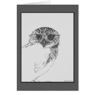 Little Owl Blank Note Cards
