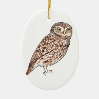 Little Owl Ceramic Oval Decoration