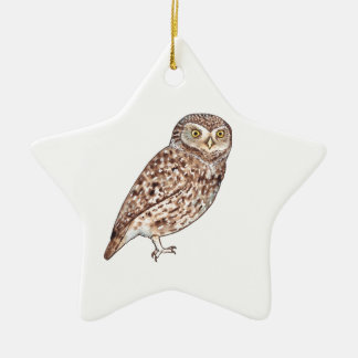 Little Owl Ceramic Star Decoration