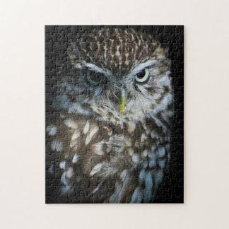 Little Owl Puzzle