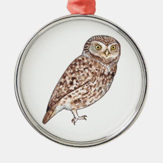Little Owl Silver-Colored Round Decoration