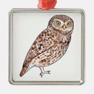 Little Owl Silver-Colored Square Decoration