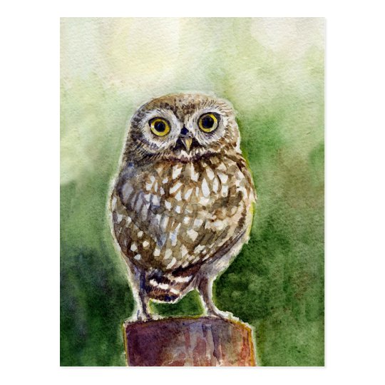 Little owl watercolor painting postcard
