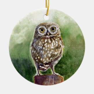 Little owl watercolor painting round ceramic decoration