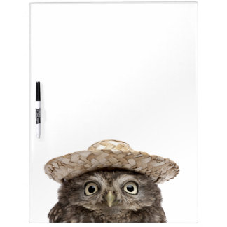 Little Owl wearing a straw hat - Athene noctua Dry Erase Board